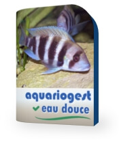 CD-Rom AquarioGest Eau douce