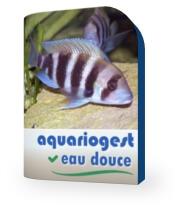 logo de Aquariogest
